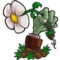 Plants vs. Zombies 植物大战僵尸 for Mac v1.0.4 英文版 益智策略游戏